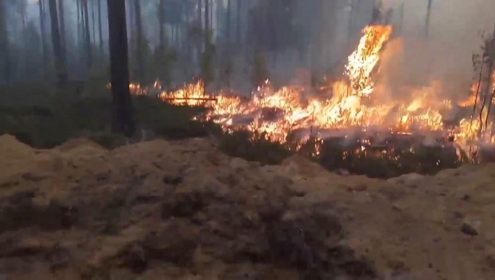 лесной пожар в карелии