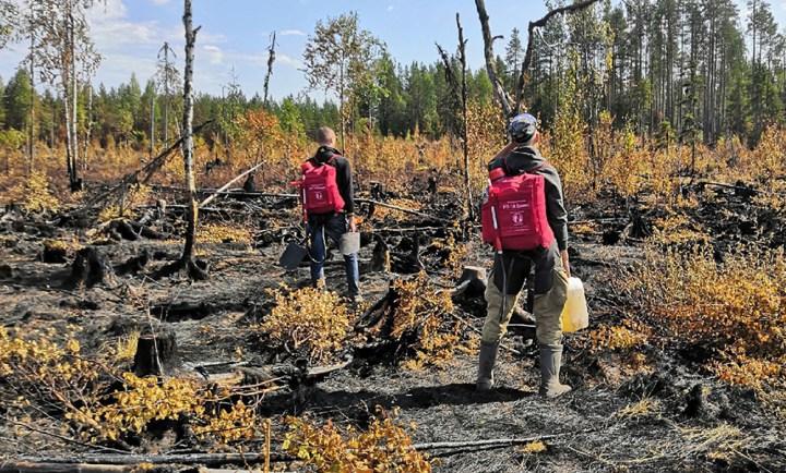 Волонтеры тушать лес