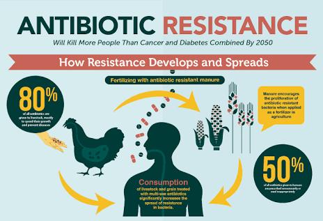 Mengenal Antibiotik dan Resistensi Antibiotik