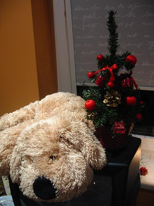 Šiltos mintys Kalėdų belaukiant