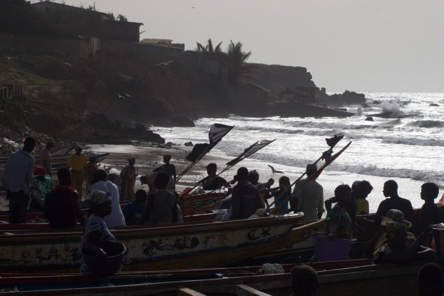 Gambia Fishmarket - catch coming in