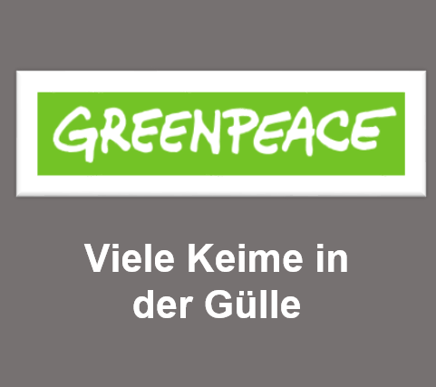 Greenpeace: Keime in der Gülle