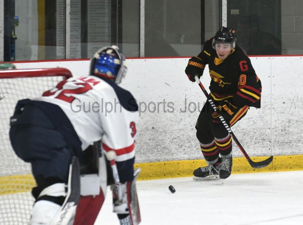 Photos: Guelph Gryphons-Brock men's hockey