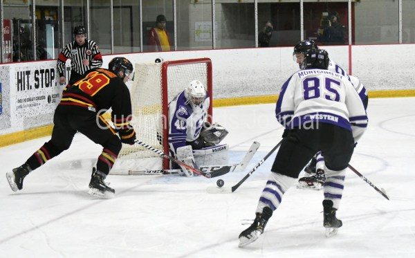 Photos: Guelph Gryphons-Western men's hockey