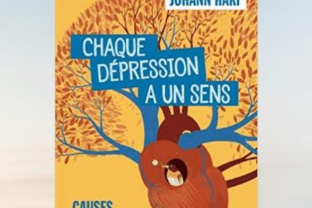 chaque dépression a un sens résumé