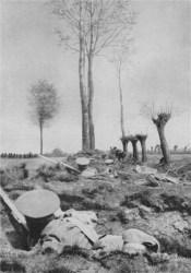 BEF Skirmishing 1914
