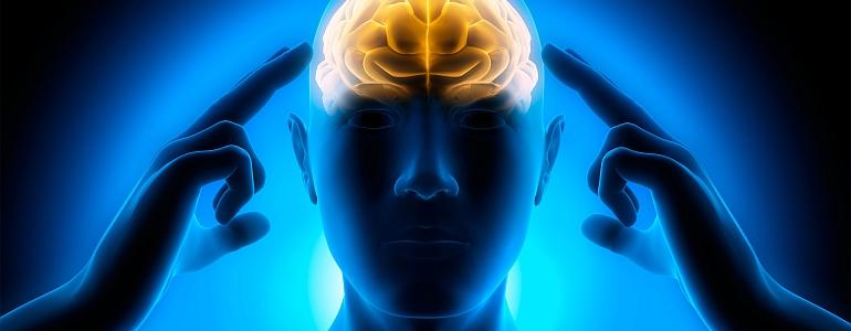 GFM 302 - Neuromarketing - Warum kaufen Kunden - Teil 1
