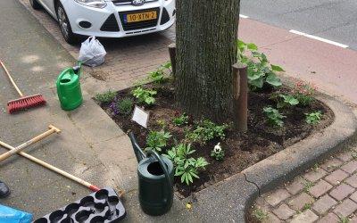 Bescherm je guerrilla tuin: de gemeente