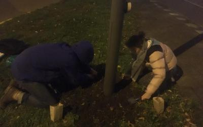Short story of a first Guerrilla Gardening action