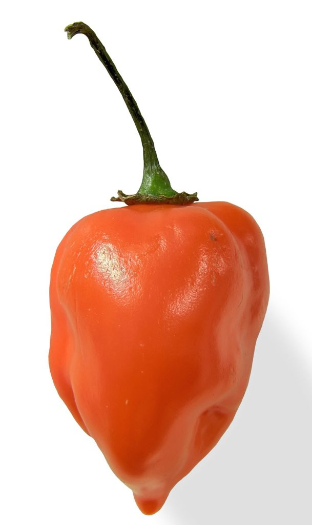 Habanero peppers are used in hot sauces and other spicy foods.