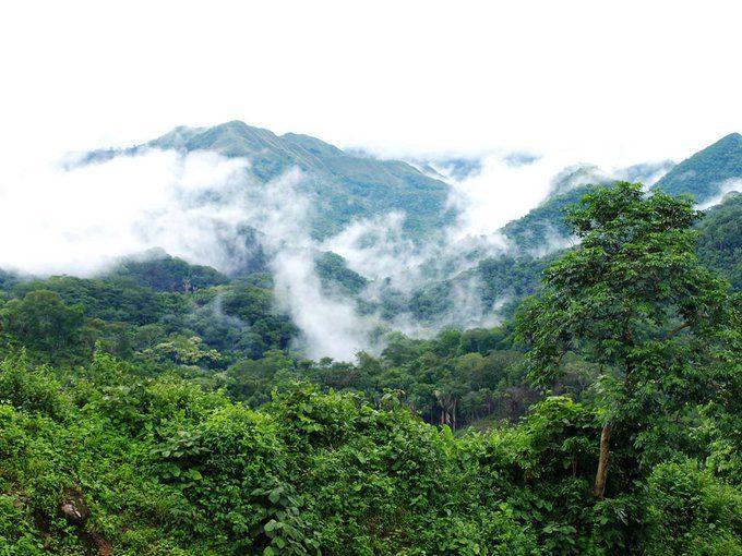 Tirgua National Park, Venezuela