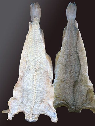 Bacalhau, Portuguese dried and salted cod