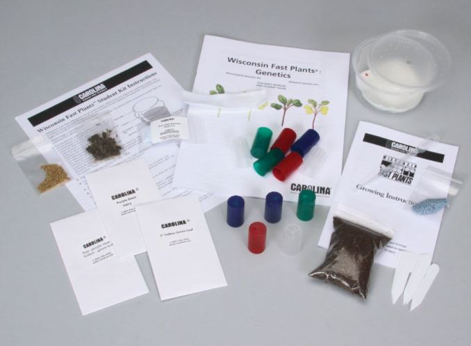 Wisconsin Fast Plants® Dihybrid Genetics Student Kit