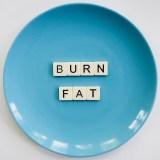 natural fats burners