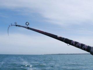 sailboat-fishing