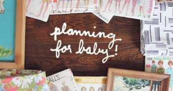 planiranje prinove 2