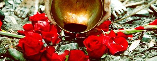 guia-da-alma-sagrado-feminino-plantar a lua-chanel-baran-fases-lua-nova-mulher-diadoplantesualua--