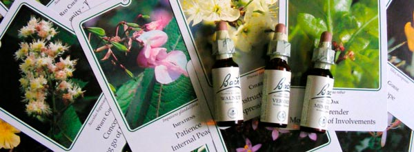 frascos de terapia floral sob tarot alquímico