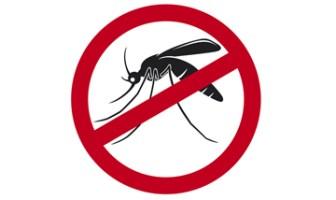 images teste dengue 18011