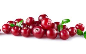 quais-os-beneficios-do-cranberry