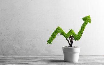 lucro-da-novartis-cai-125-no-2o-trimestre-mas-vendas-sobem-4