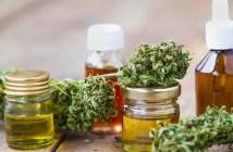 entenda-sobre-os-produtos-derivados-de-cannabis