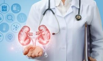 pesquisa-revela-dados-ineditos-sobre-saúde-renal-dos-brasileiros