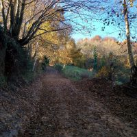 """El sendero de la """"Coroña de Castru""""... vistas impresionantes y descubrir las ruinas de un castro habitado por un poblado ancestral"""