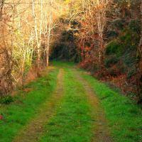 Ruta verde del Ferrocarril... precioso recorrido que transita por la antigua vía de un tren minero