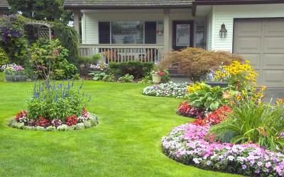 Monte Seu Próprio Jardim Simples Em Frente De casa