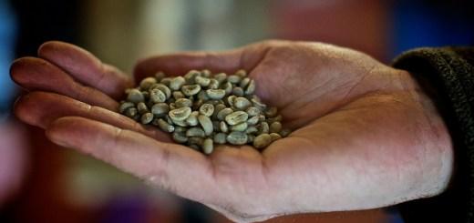 Café Orgânico. Crédito da Imagem: Allagash Brewing