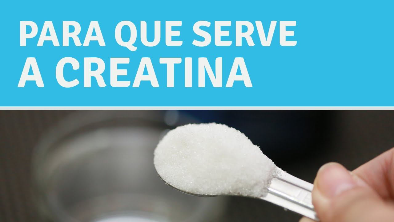 Para que serve a creatina?