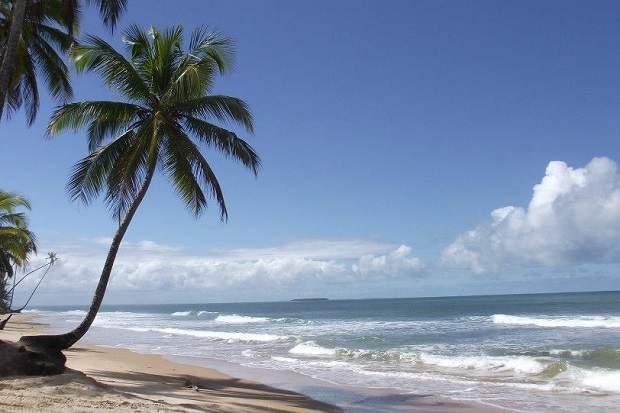 Melhores praias do Brasil: Barra Grande / Península de Maraú - Praia Taipus de Fora - Bahia
