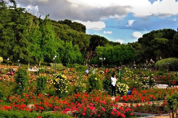 Parques de Madrid na Primavera