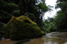 Parque Nacional da Serra do Divisor