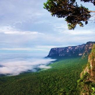 Parque Estadual da Serra do Aracá
