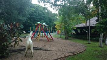 Parque Municipal do Mindú