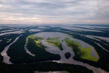 Parque Nacional de Anavilhanas