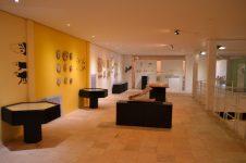 Museu de Paleontologia da Universidade Regional do Cariri