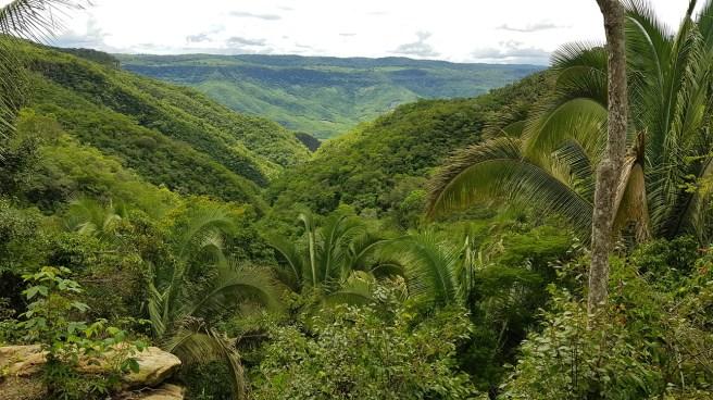 Reserva Ecológica do Serra Grande Hotel