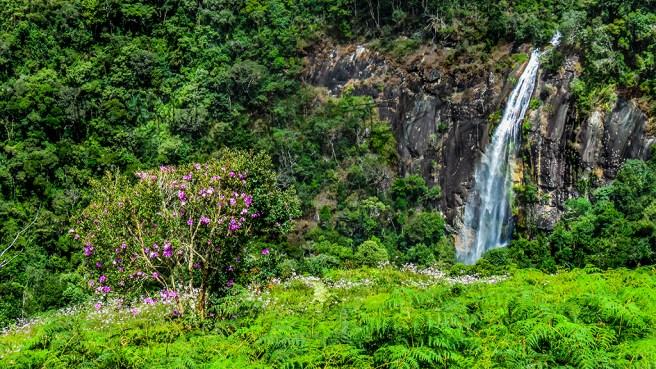 Cachoeira da Fragaria
