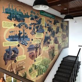 Museu da Borracha