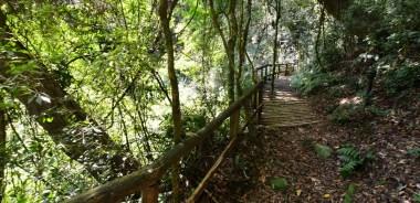 Parque Mato Sartori
