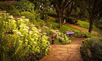 Le Jardin (Parque de Lavanda)