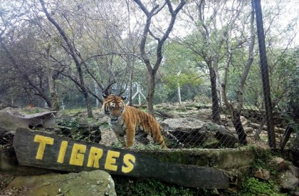 Zoológico Municipal de Salto