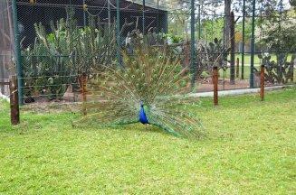 Reserva de Flora y Fauna Dr. Rodolfo Tálice