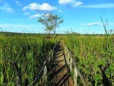 Nascente do Riachão Lagoa Azul/ foto Gugu Santiago