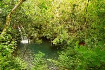 Refugio Biológico Tatí Yupí