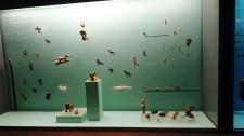 Museo del Oro Zenú/ foto Martha Susana Melo