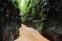 Reserva Natural y Ecoturística Las Dalias/ foto Gilmar Botache